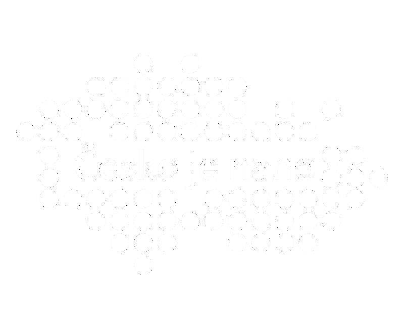 Asociace nanotechnologického průmyslu ČR - Future Port Prague 10.—11. 9. 2019